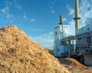 Biomass Energy from Organic Waste