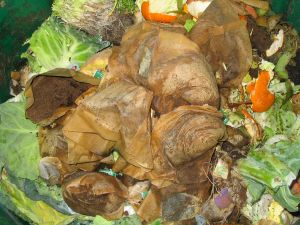 Organic Waste Recycling