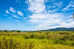 Ecosystem Conservation