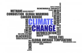 Is Global Warming Climate Change Real